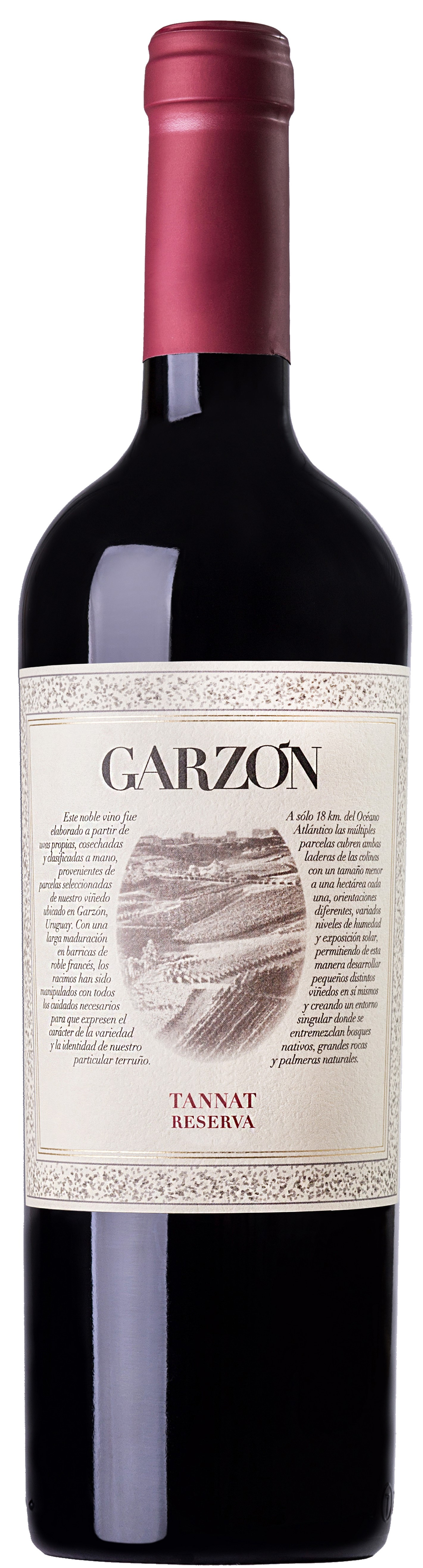 Powerful rich reds - TANNAT, Reserve, Garzon. Uruguay